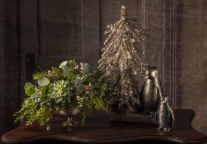 Fresh Succulent and Evergreen Arrangement