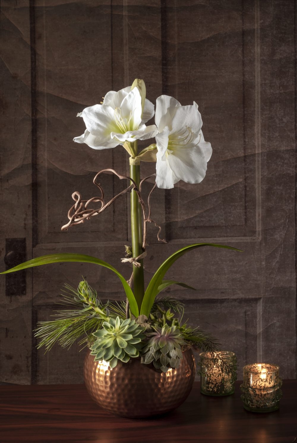 Live Amaryllis Plant with Succulents in Copper