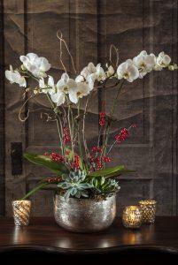 Orchids in Mercury Cachepot