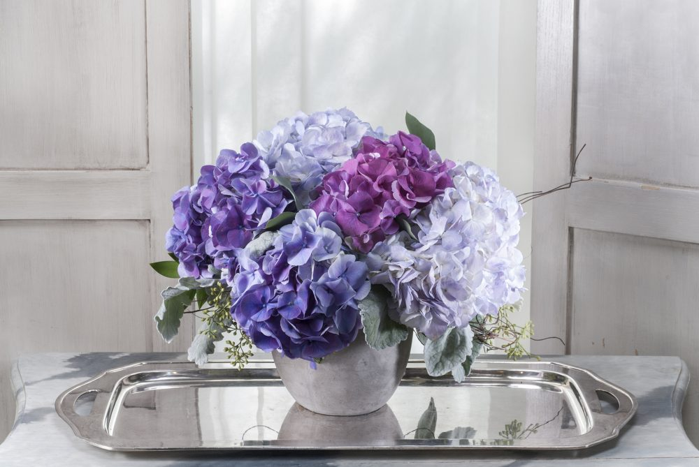 Fresh flowers of bright blue and purple hydrangea with silver sage foliage