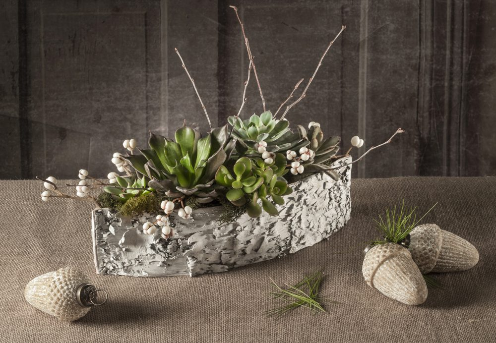 RWF Original fresh succulent heads artfully arranged with evergreen and berry accents in a natural birch boat.