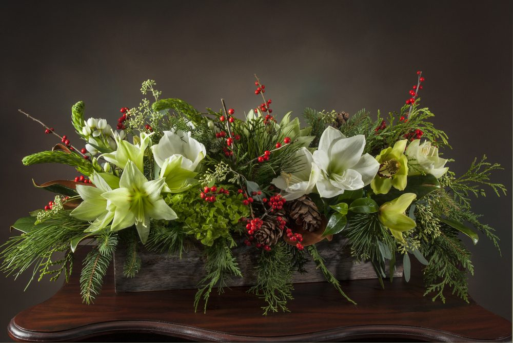 Beautiful green and white amaryllis holiday centerpiece, fresh flower arrangement with accents of red berries, cones, and evergreens delivered